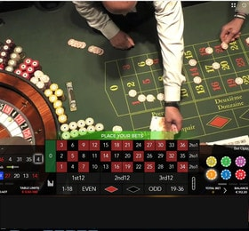 Authentic Roulette Professional
