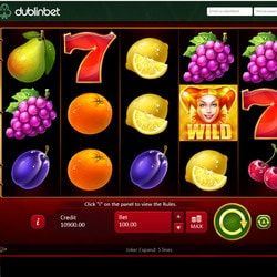 Machine à sous Joker Expand de Playson sur Dublinbet Casino