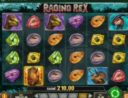 Découvrez la machine à sous Raging Rex de Play'n Go sur Dublinbet