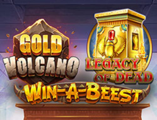 Play'n GO organise un tirage au sort sur le casino Stakes